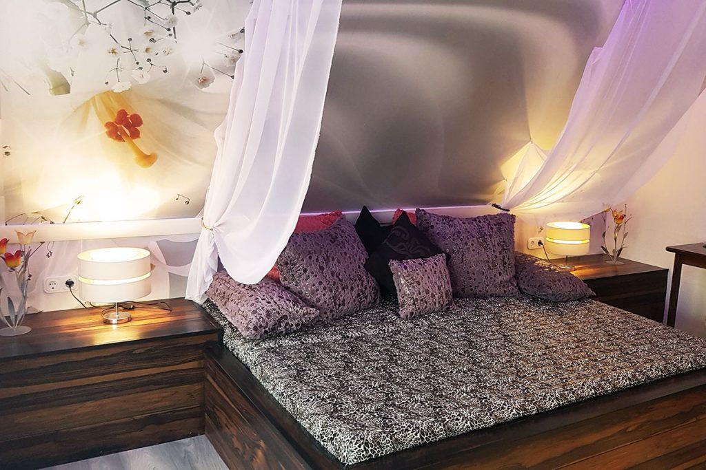 Sofa, lila Kissen, Lampe, Vorhang
